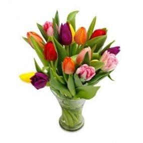Kleurrijke tulpen klein