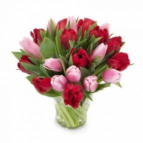 Rode met roze tulpen klein