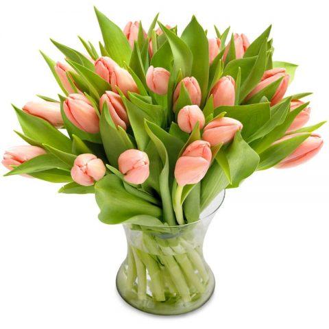 zacht roze tulpen groot